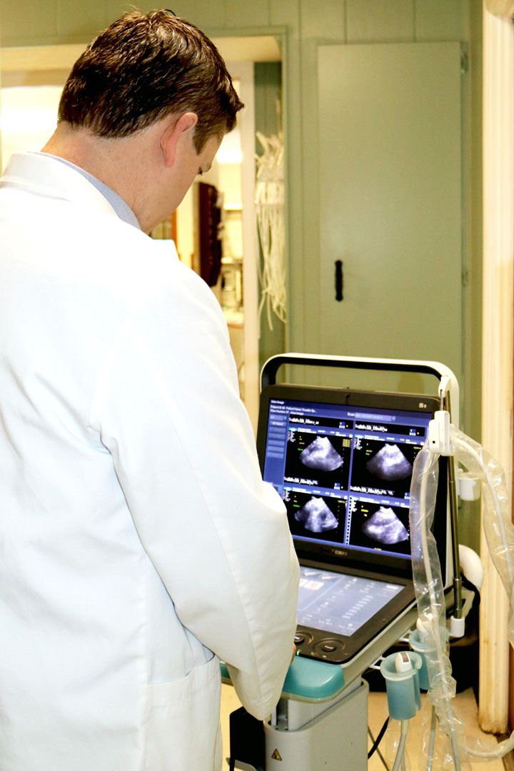 Dr. Michael Ammermon doing and ultrasound - Pooler Veterinary Hospital