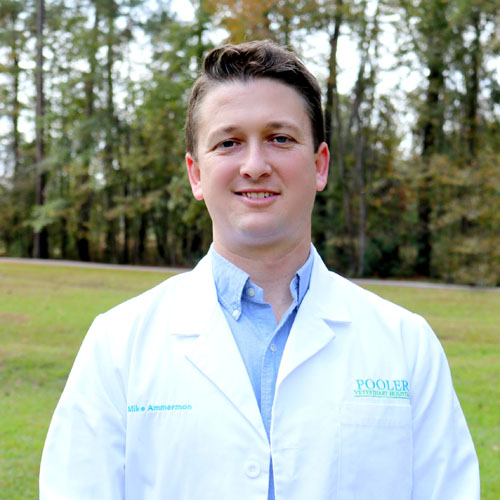 Dr. Michael Ammermon, DVM - Pooler Veterinary Hospital - Bloomingdale, GA